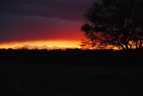 sunset nikon treet d80