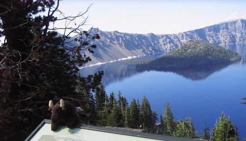 Buddy at Crater Lake NP