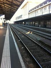 Swissrail - Lausanne Station - 4