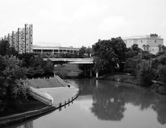 Preston Ave. Bridge over Buffalo Bayou, Houston, Texas 0801090958BW
