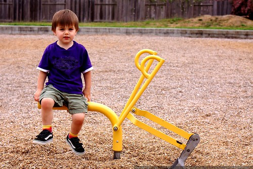 sequoia loved this playground digger in arcata    MG 1363