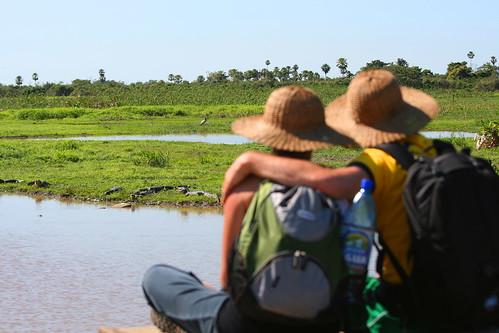 two sky sun green water landscape looking bolivia future pampas futuro alligators guardare rurrenabaque alligatori