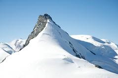 Rimpfischhorn's summit