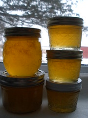 Lemon Honey Jelly
