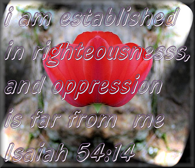 Isaiah 54 http://www.flickr.com/photos/cjdeadrisen/3969263854/