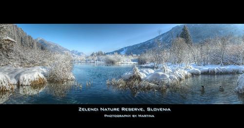 blue winter lake green nature geotagged spring slovenia naturereserve martina gorenjska kranjskagora zelenci diamondclassphotographer theunforgettablepictures natureselegantshots nadiža geo:lat=46492395 geo:lon=1373718