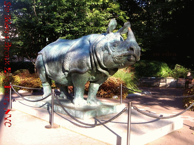 Rhino sculpture at Bronx Zoo