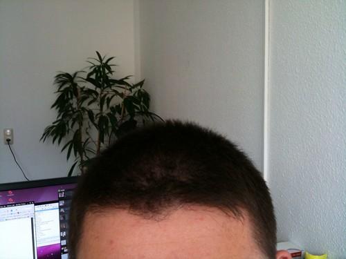 Der Friseur war da