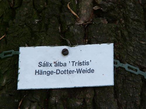 Man ihat m Februar auch schon in Diesbar Seuslitz Aprillenwetter und verliert im schönsten May der frischste Baum im Park die Blätter, was wird denn allererst im Herbste wohl geschehn 813