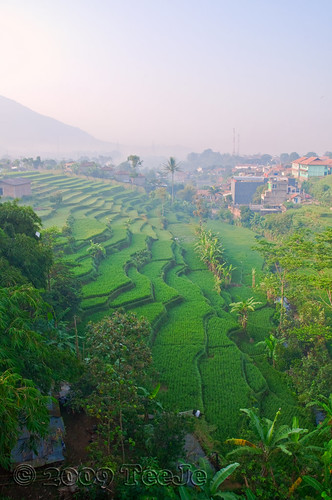 indonesia bandung westjava nikkor d300 jatinangor abigfave teeje anawesomeshot worldwidelandscapes natureselegantshots cikudabridge