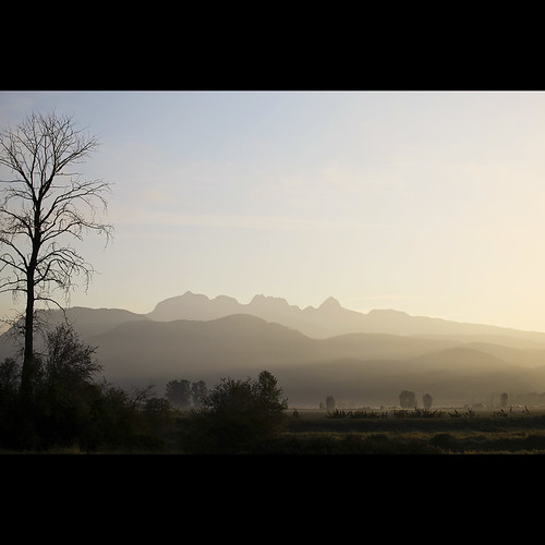 mountains landscape dawn morningmist goldenears pittmeadows kvdl