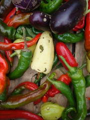 bell pepper(0.0), plant(0.0), dish(0.0), cayenne pepper(1.0), chili pepper(1.0), vegetable(1.0), serrano pepper(1.0), bell peppers and chili peppers(1.0), bird's eye chili(1.0), peperoncini(1.0), produce(1.0), food(1.0), pimiento(1.0), jalapeã±o(1.0),