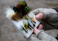 Fly Fishing Getting Started - A Dozen Top Flies