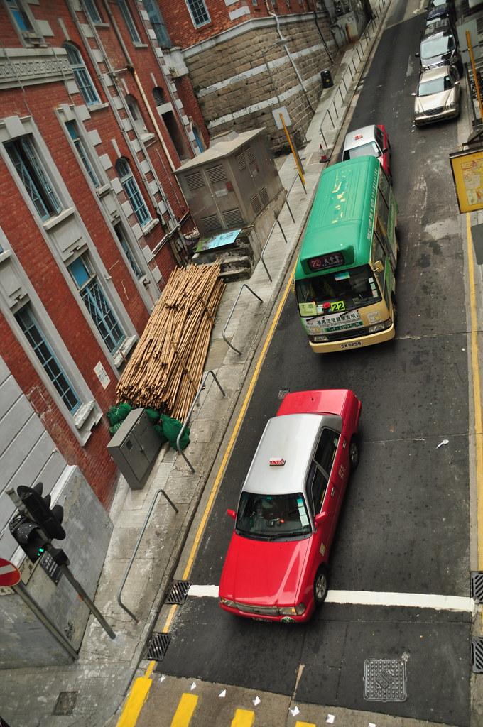 Bamboo prepared for scaffolding