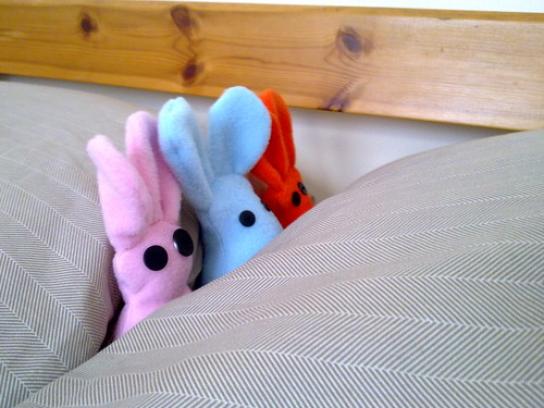 Bunnies in Bed