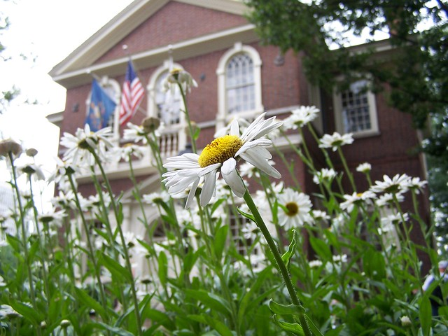 flowers in front of carpenter's hall