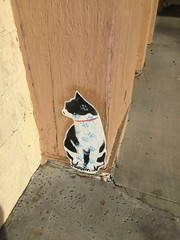 Cat art, San Pedro