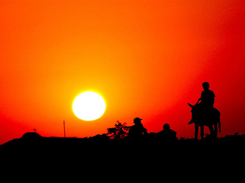 boy sunset sky people horse orange sun man silhouette collage panasonic uzbekistan saariysqualitypictures swatimage rositaso