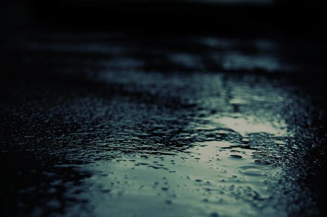 morning rain flickr   photo sharing
