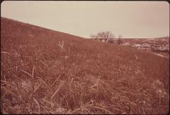 View of the Konza Prairie, 1,000 Acres of Virgin Tallgrass Prairie near Manhattan, Kansas, in the Winter. The Mood and Look of the Prairie Changes Drastically from Season to Season. 02/1975