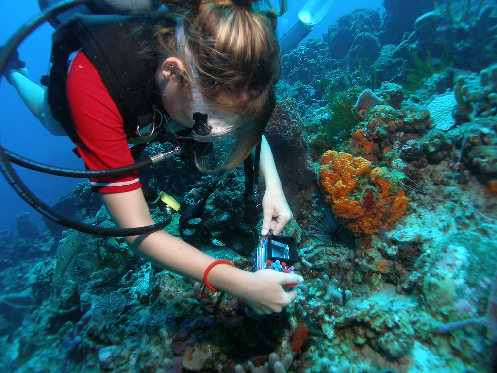 Photography and Underwater Photography Expeditions with ...