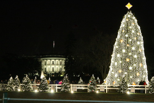 white house and national tree