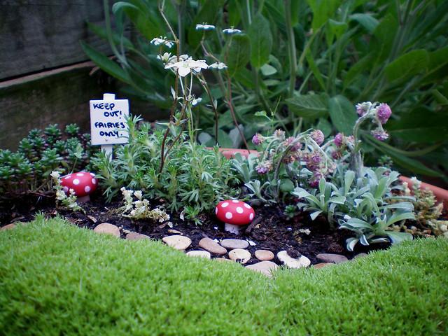 Fairy garden flickr photo sharing for Jardines en miniatura
