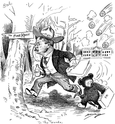 """To the Woods!"" Cartoon Featuring President Theodore Roosevelt and the Teddy Bear Character by The U.S. National Archives"