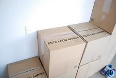 cash(0.0), furniture(0.0), cardboard(1.0), carton(1.0), box(1.0),