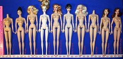 Integrity Bodies (1:6 scale dolls)