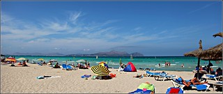 Image of Playa de Muro. beach playa mallorca picafort