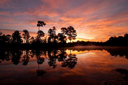 sky lake nature clouds landscape country northcarolina coats pinetrees waterreflection harnettcounty explored