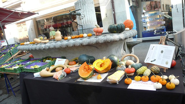 Market Day Autumn, Solothurn
