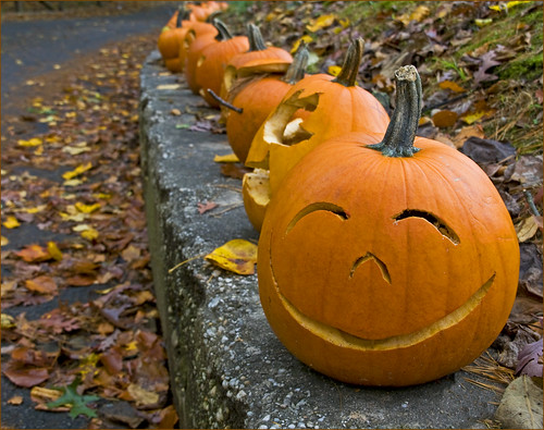 pumpkins on curb by Alida's Photos