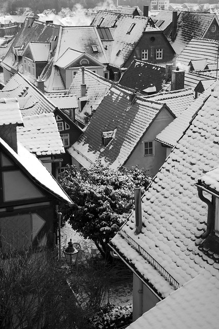 Roofs BW