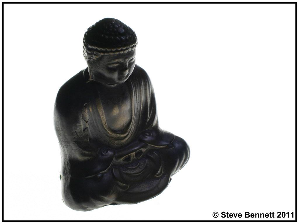 Contemplation  365/345
