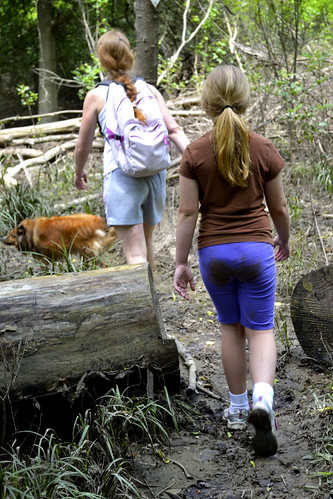 Local Treks Hiking: Cut Tree Trail