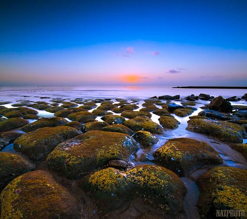 pink blue sea sky texture water clouds sunrise moss rocks explore auckland northshore abbas frontpage tone brownsbay nazar sigma1020mm pattren vertorama nazarab