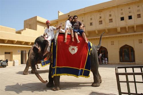 Subidos en el elefante que nos llevó desde el pueblo hasta lo alto de la colina del Palacio fuerte amber, una de las siete maravillas de la india - 4143454372 ccab4c7f4c - Fuerte Amber, una de las siete maravillas de la India