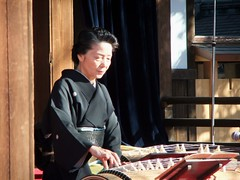 plucked string instruments, traditional korean musical instruments, string instrument, folk instrument, guzheng, traditional japanese musical instruments, string instrument,