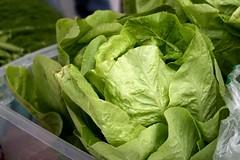 vegetable, choy sum, komatsuna, leaf vegetable, produce, food,