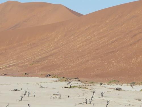 Foto del desierto del Namib (Namibia)