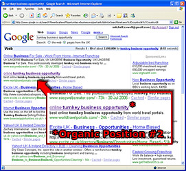 Google Front Page Search Results