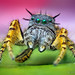 Adult Male Phidippus mystaceus Jumping Spider (With Video!) by Thomas Shahan