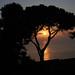 sunset by adi_tim08
