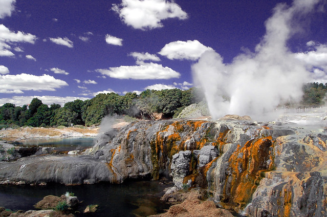 Gysir at Whakarewarewa thermal area, New Zealand