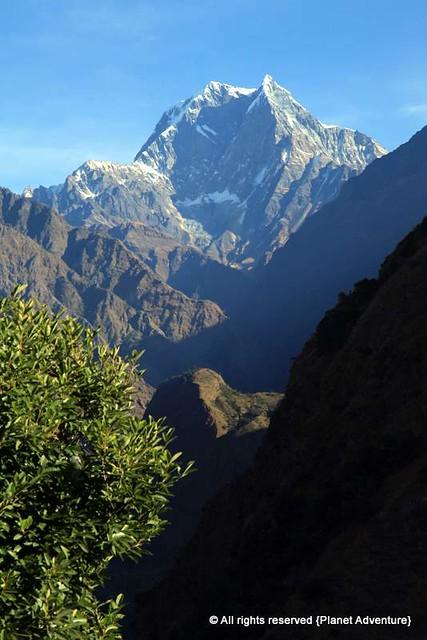 Nilgiri South 6839 metres - Annapurna Curcuit Trek - Nepal