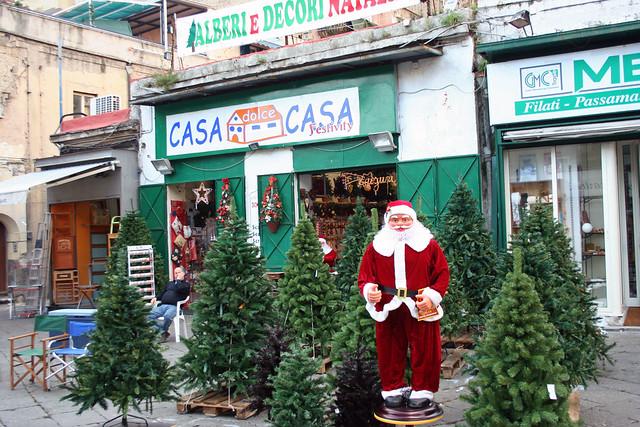 Naples Christmas Tree Lot