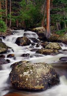 Rocky Mountain Stream.