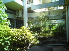 PALACE HOTEL, MALINSKA